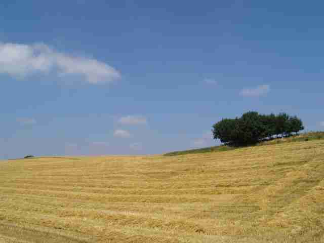 Defiscaliser Les Terres Agricoles