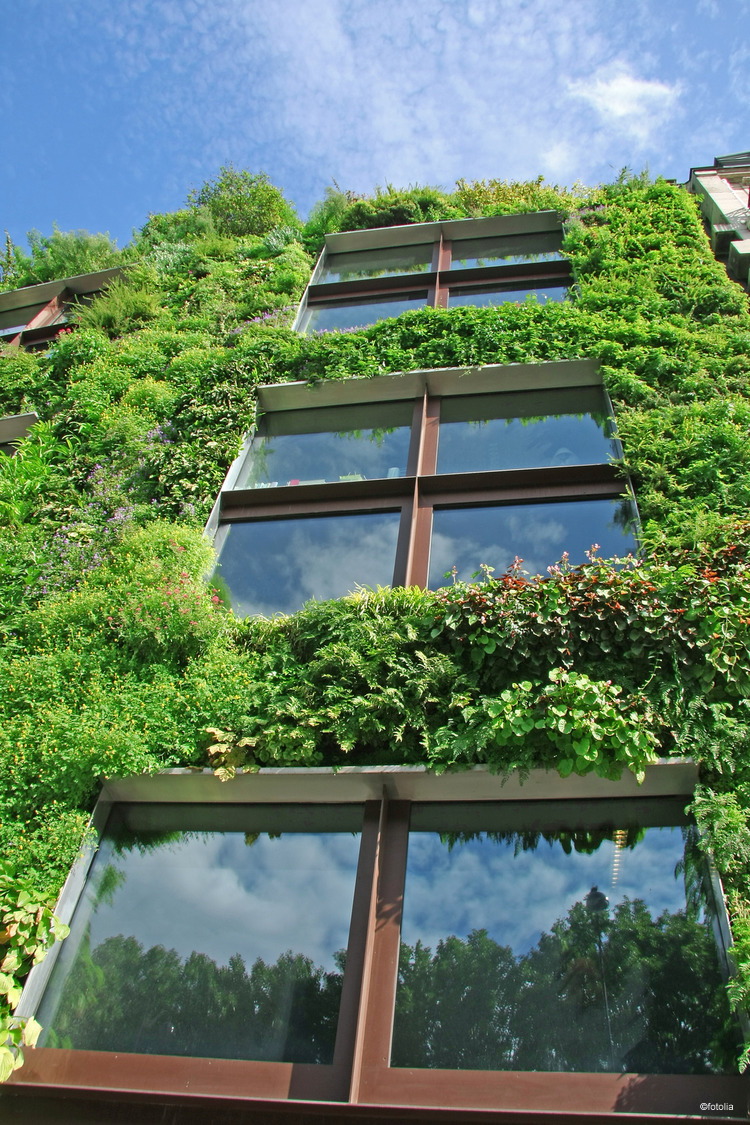 La Maison Bioclimatique Questce Que Cest - Qu est ce qu une maison bioclimatique