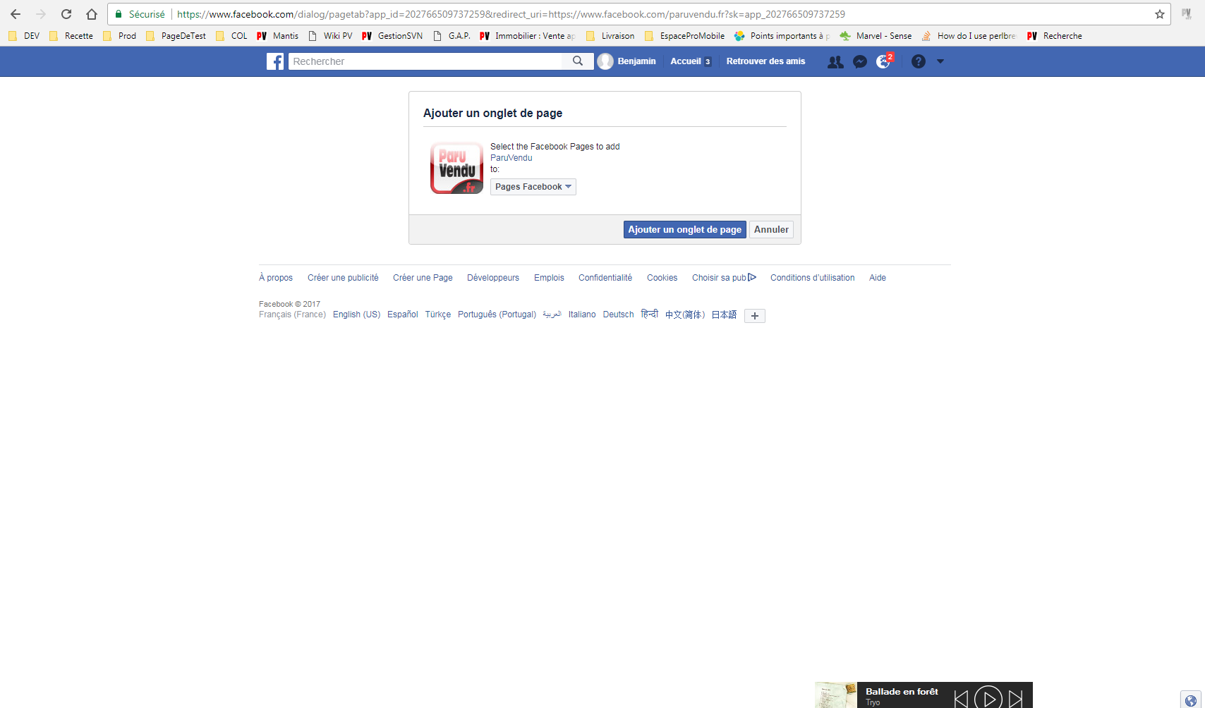 Onglet Annonce FB Tuto 1