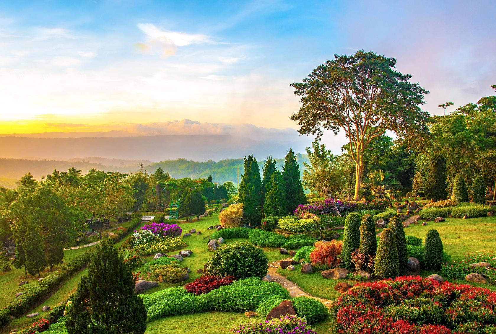Dans le jardin for Dans le jardin