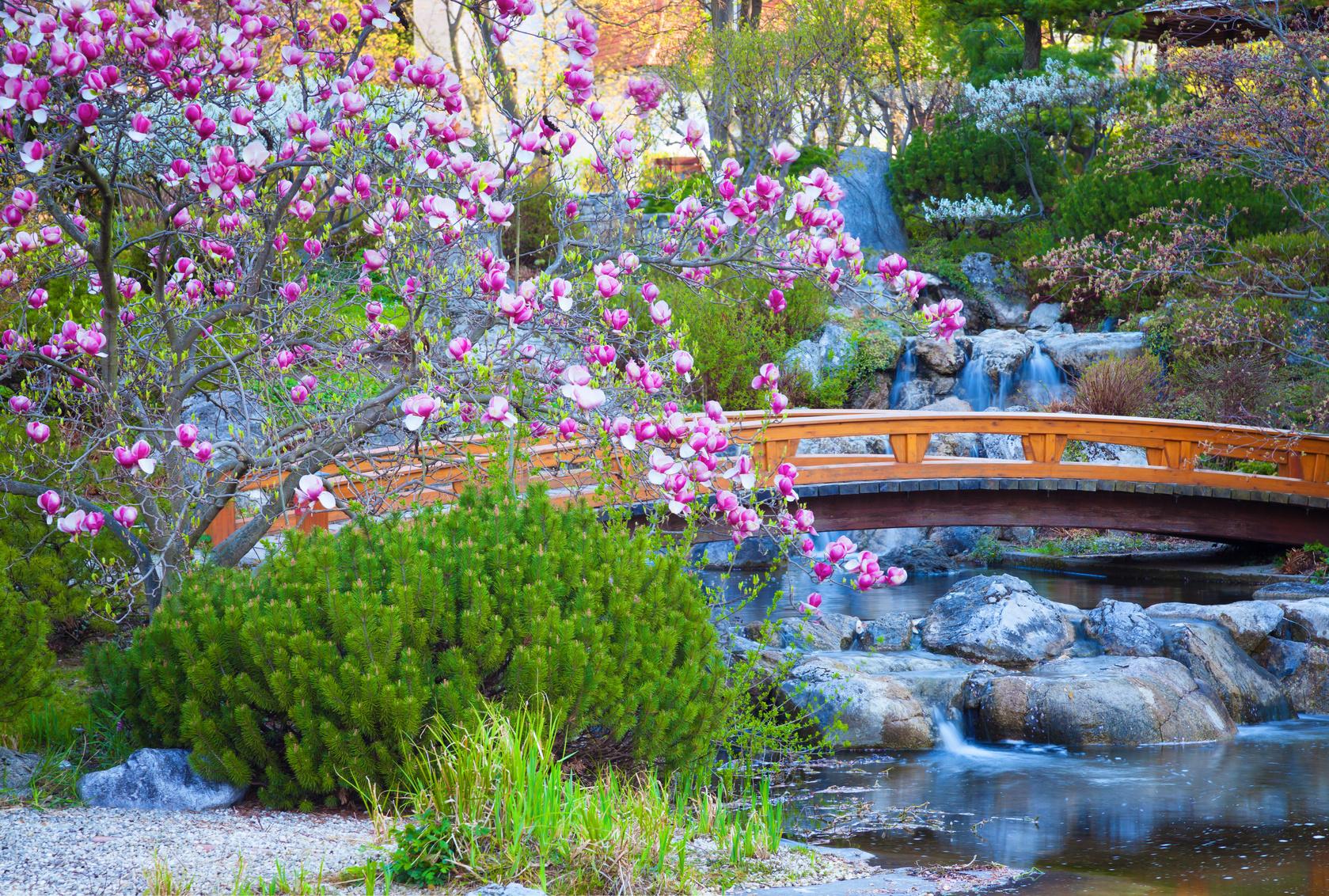 Les jardins paysagers l'esprit japonais en vogue