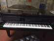 8 Nov 2019 Piano Instruments de musique