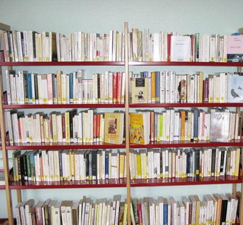 ACHETONS ou DEBARRASSONS VOS LOTS DE LIVRES Livres et BD