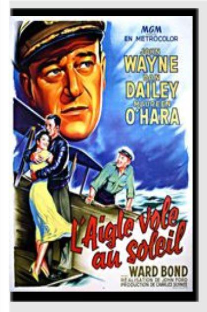 L AIGLE VOLE AU SOLEIL film 0 Dunkerque (59)