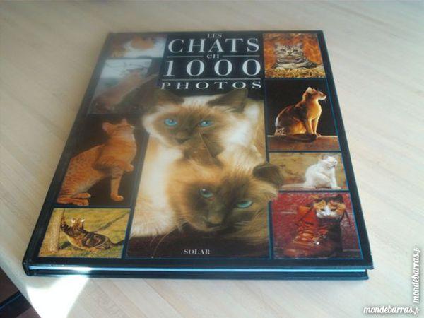 Album Les chats en 1000 photos 3 Rocbaron (83)