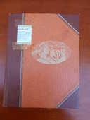ALBUM de 992 TIMBRES du Monde 55 Dammarie-les-Lys (77)