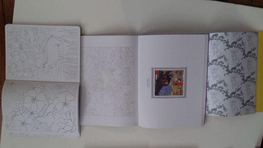 Albums de coloriages  6 Tulle (19)