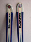 Ski alpin Dynastar 85 Talmont-Saint-Hilaire (85)
