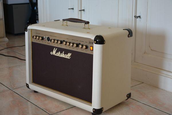 ampli guitare 250 Tanneron (83)