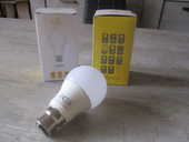 Lot de 2 ampoules LED B22 neuves 1 Caluire-et-Cuire (69)