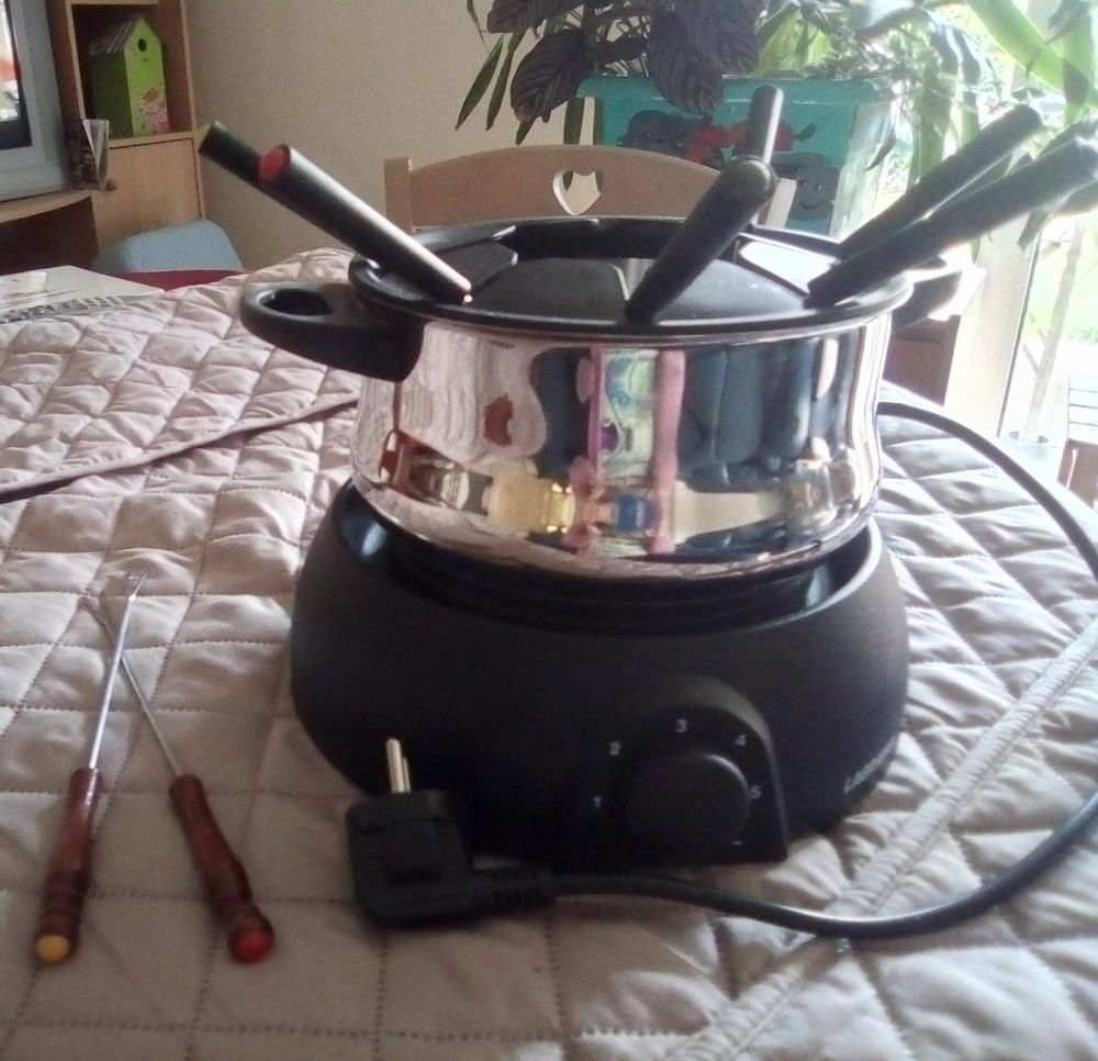Appareil a fondue  20 Plérin (22)