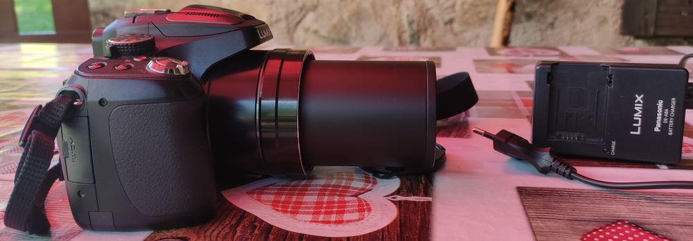 appareil photo numérique Panasonic 350 Theys (38)