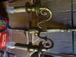 Appliques en laiton style Louis XV