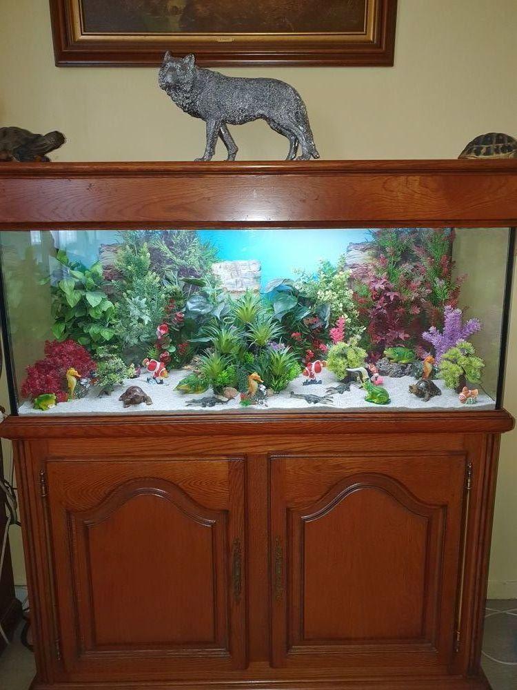 Aquarium avec meuble chêne  575 Levallois-Perret (92)