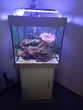 Aquarium complet Meubles