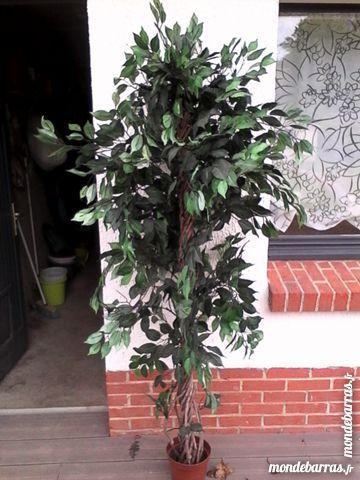 Achetez arbre décoratif occasion, annonce vente à Blendecques (62 on