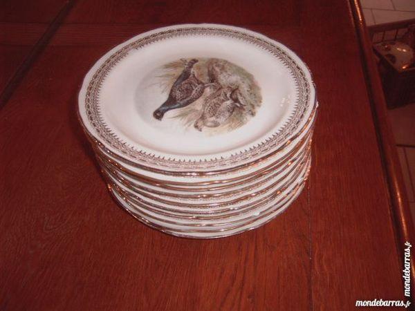 10 assiettes de chasses faire prix 35 Saran (45)