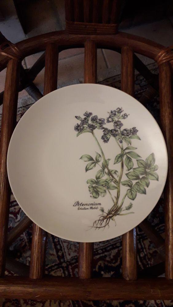 Assiettes plates modèle polemonium 30 Montigny-le-Bretonneux (78)