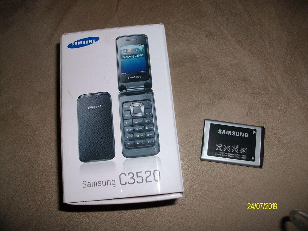 batterie de téléphone portable 10 Guilliers (56)