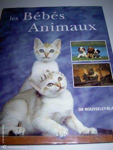 Les bébés animaux – Dr ROUSSELET-BLANC 20 Alfortville (94)