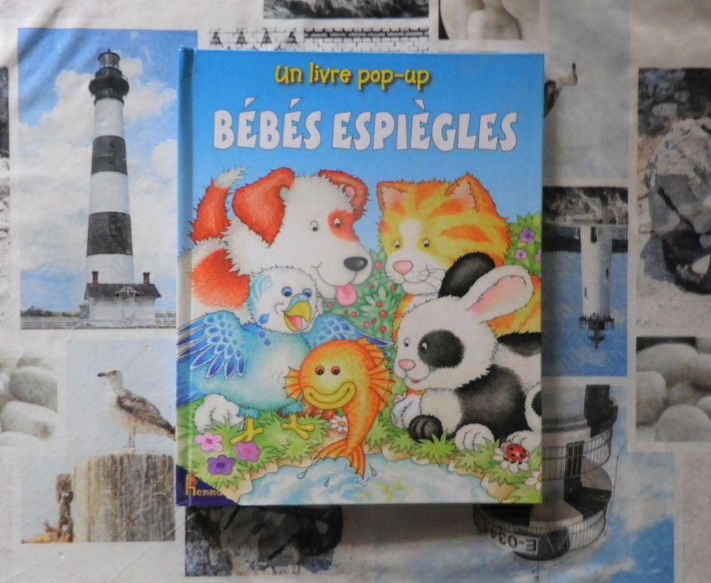 BEBES ESPIEGLES Livre pop-up Ed. Hemma 2 Bubry (56)