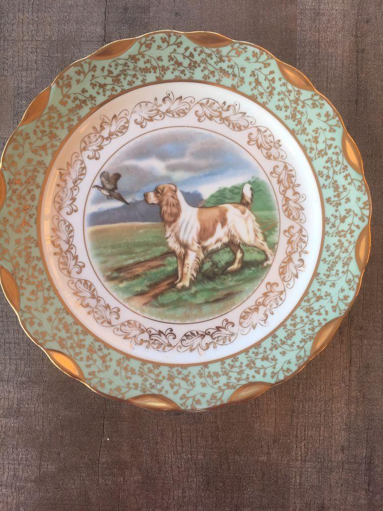 Belle assiette décorative  30 Nîmes (30)