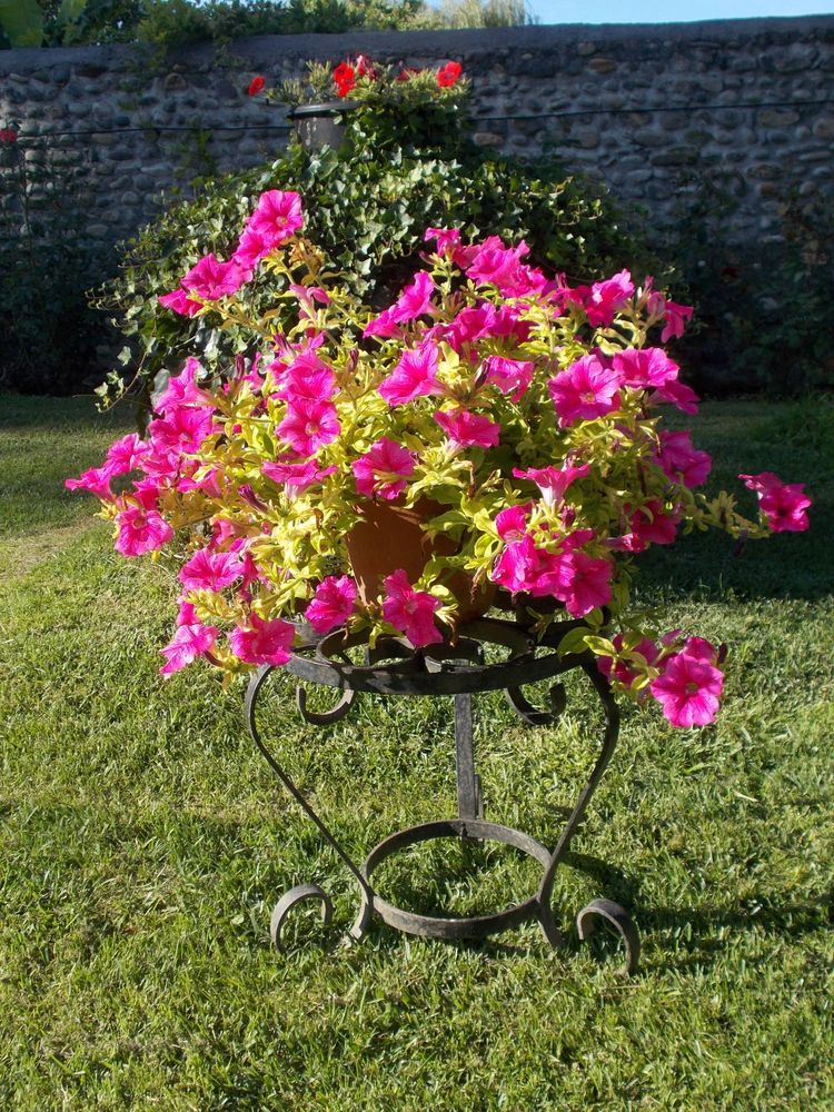 Belle SELLETTE PORTE-PLANTES en FER FORGÉ, Envoi ok  50 Cazères (31)