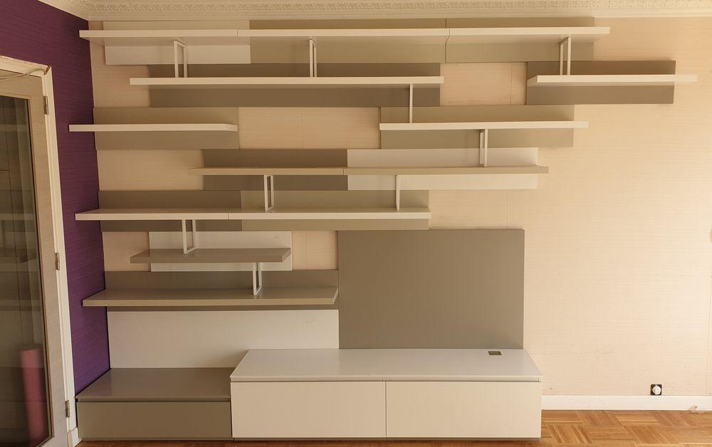 Bibliothèque + meuble TV LIGNE ROSET 1600 Villeurbanne (69)