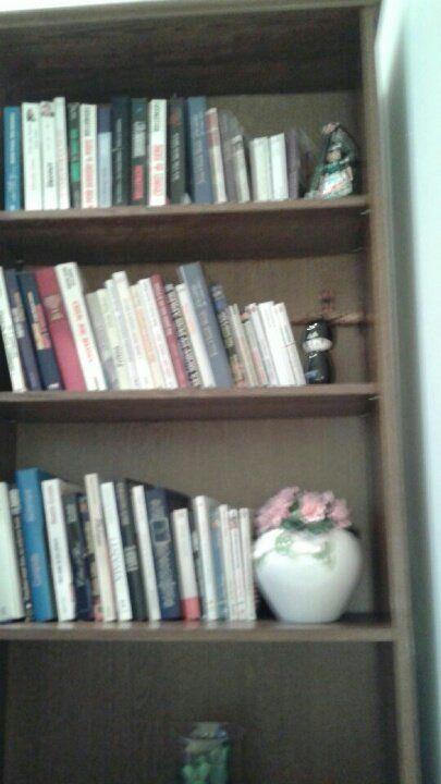 Bibliothèque rustique 30 Seugy (95)