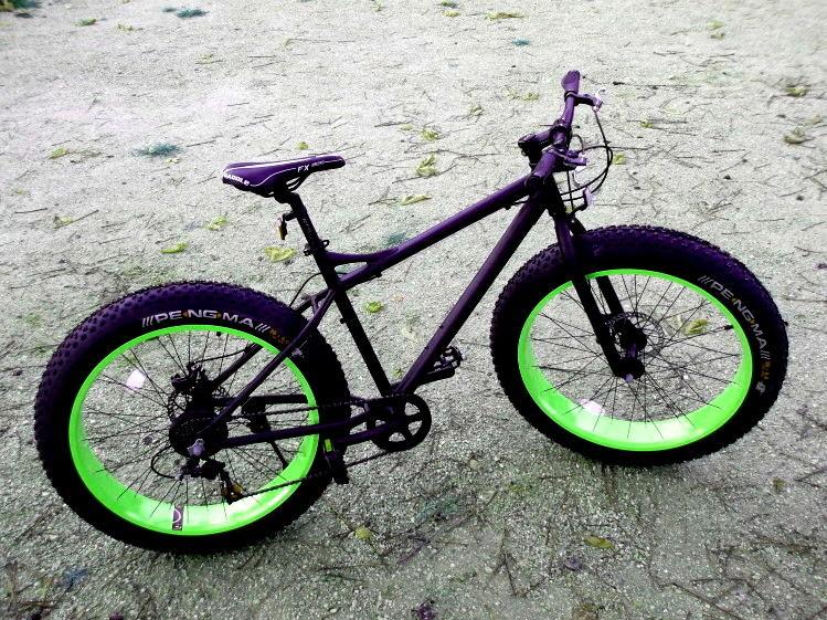 Fat Bike 26  550 Lisses (91)