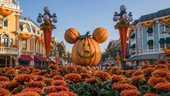 Billet Disneyland Paris  40 Noisy-le-Grand (93)