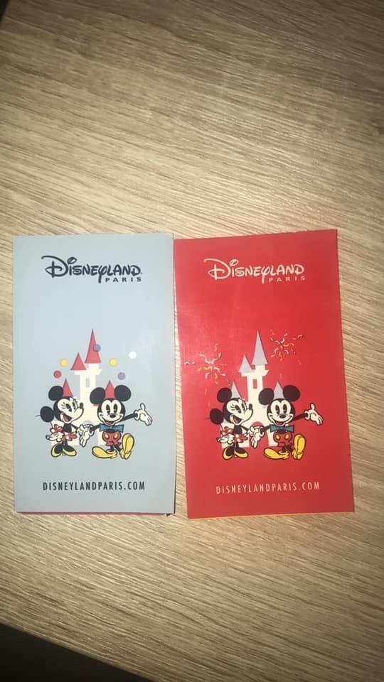 Billets 1 jour 2 parcs Disney 65 Paris 15 (75)