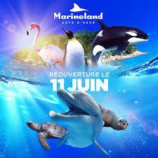 Billetterie Parc Marineland Antibes 25 Saint-Maixent-l'École (79)