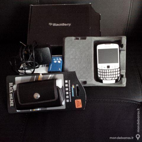 Blackberry Curves 30 Tours (37)