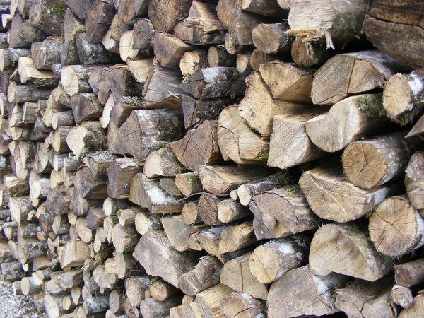 Chene Bois De Chauffage : bois de chauffage du chene et du charme sec Bricolage