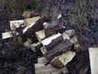 bois de chauffage sec éssance grisar Vrély (80)