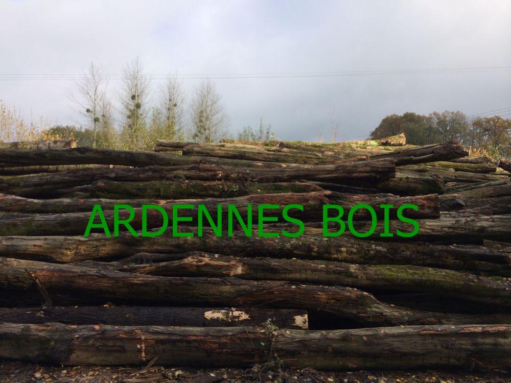 Bois de chauffage en grandes longueurs grumes 38 Douai (59)