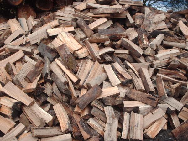 Achetez bois de chauffage occasion annonce vente rocroi 08 wb149736919 - Casier a bois de chauffage ...