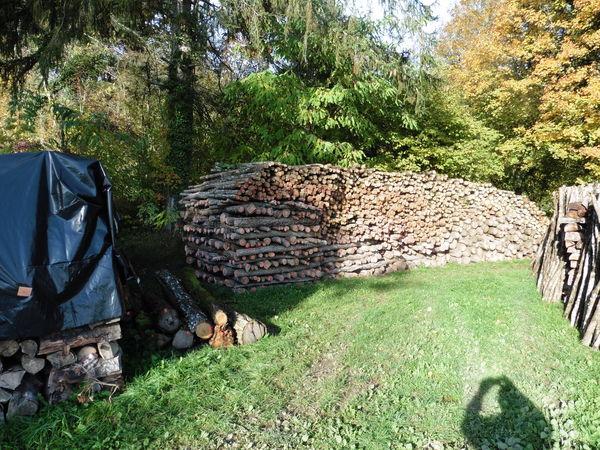 Bois de chauffage occasion en c te d 39 or 21 annonces achat et vente de bois de chauffage - Poids d un stere de bois sec ...