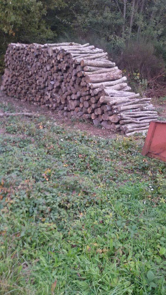 Cherche Bois De Chauffage - Achetez bois de chauffage occasion, annonce venteà Montargis (45) WB154641515