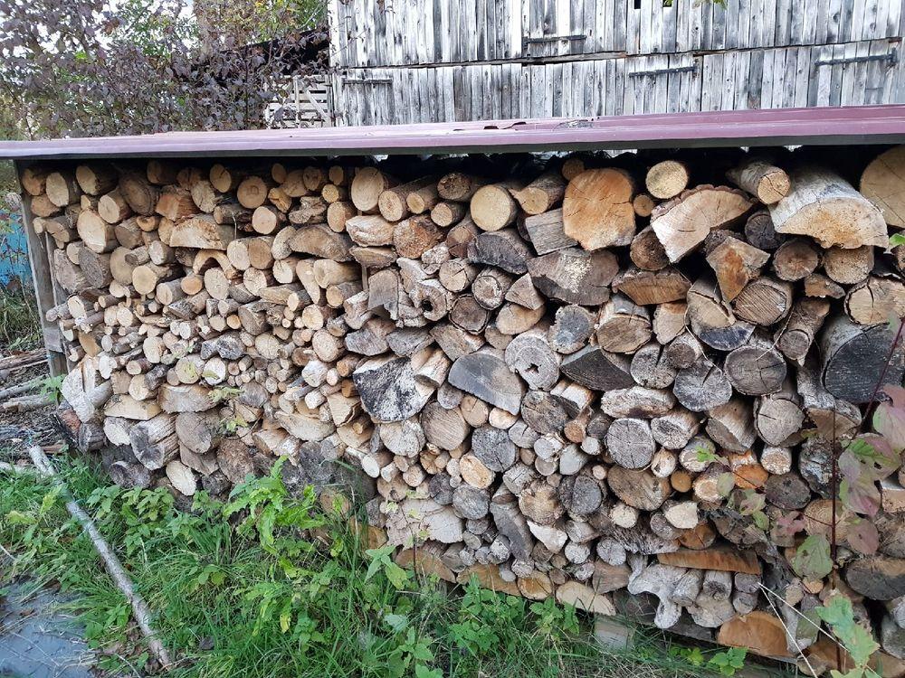 Bois de chauffage en 10 à 15 cm  190 Colmar (68)