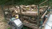 bois de chauffage   80 Colmar (68)