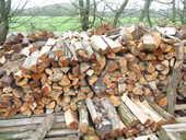 bois de chauffage 65 Chauché (85)