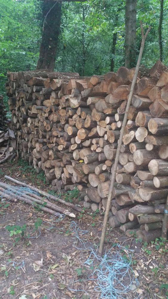 bois de chauffage  55 Colmar (68)