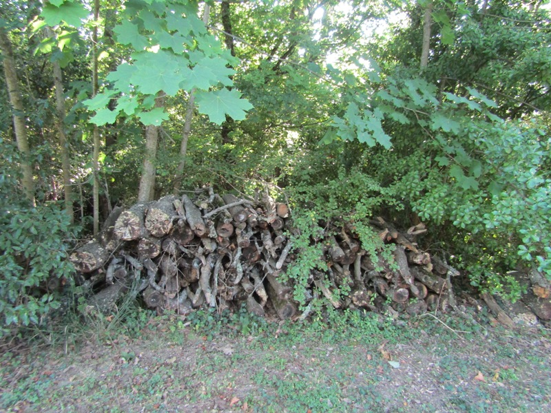 bois de chauffage 25 Saint-Michel-de-Lanès (11)