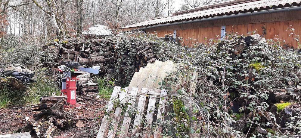 Bois vrac à faire secher 0 Saint-Caprais-de-Bordeaux (33)