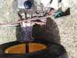 boite hydrostatique tracteur tondeuse Jardin