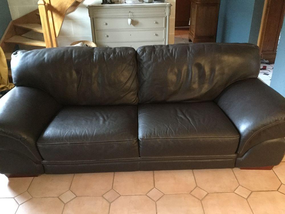 Bonne affaire un canapé en Bonn état ! 350 Saint-Christophe-à-Berry (02)