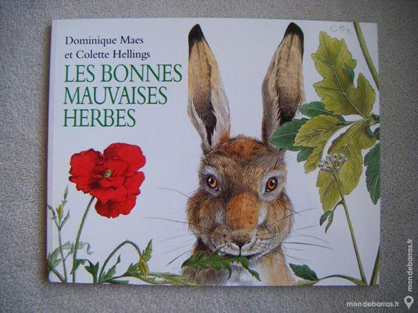 Les bonnes mauvaises herbes, Dominique Maes 3 Reims (51)