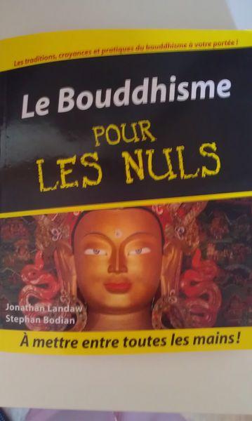 Achetez le bouddhisme pour occasion annonce vente auxonne 21 wb151068802 - Immobilier pour les nuls ...
